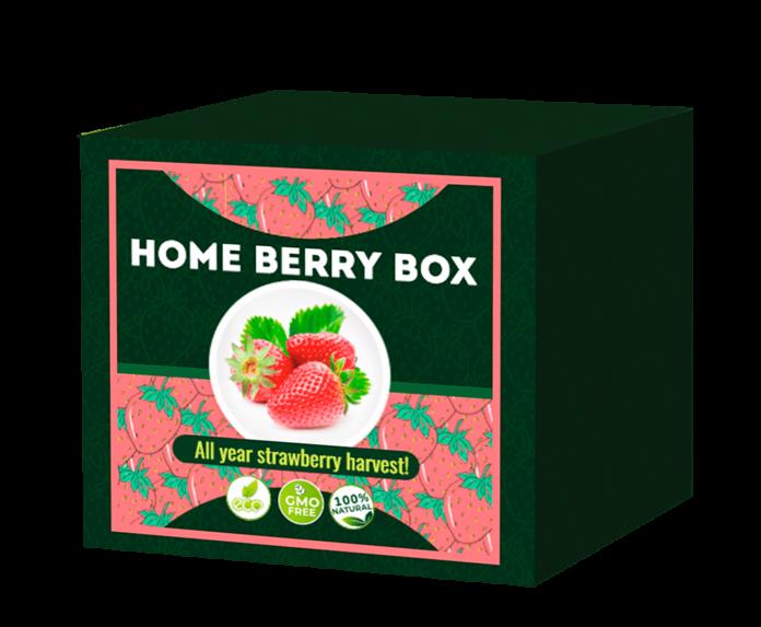 Home berry box - para emagrecer - onde comprar - como usar - funciona