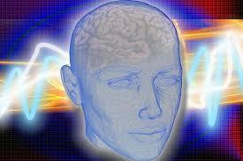 Neurocyclin - Encomendar - farmacia - preço