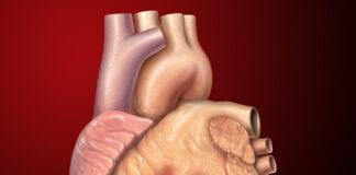 Acústica Médica - problemas de audição - farmacia - forum - como aplicar